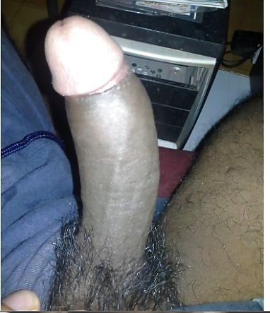 MY indian black cock