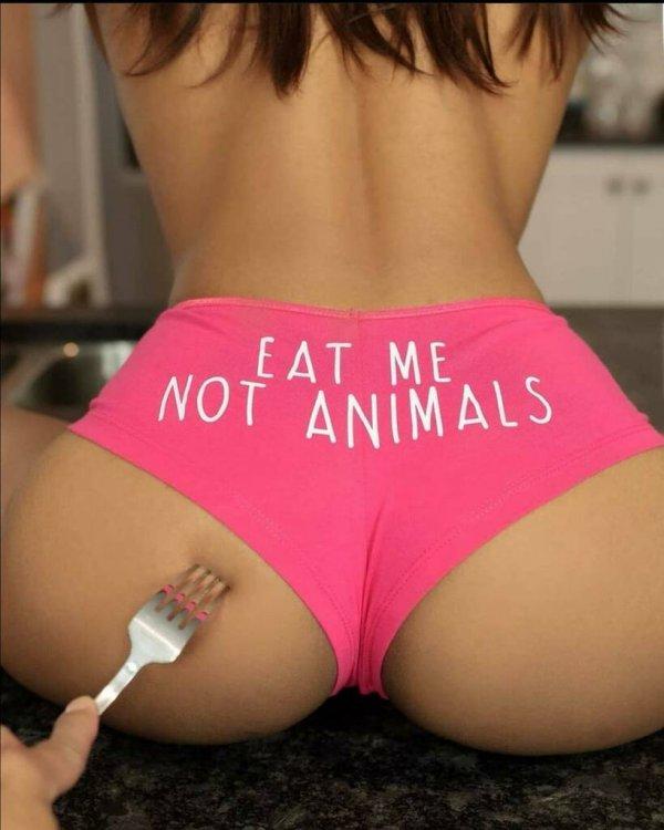 DON'T EAT ANIMALS.jpg