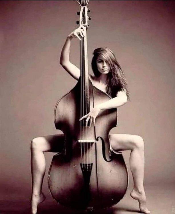 My Sis Plays the Double Bass.jpg