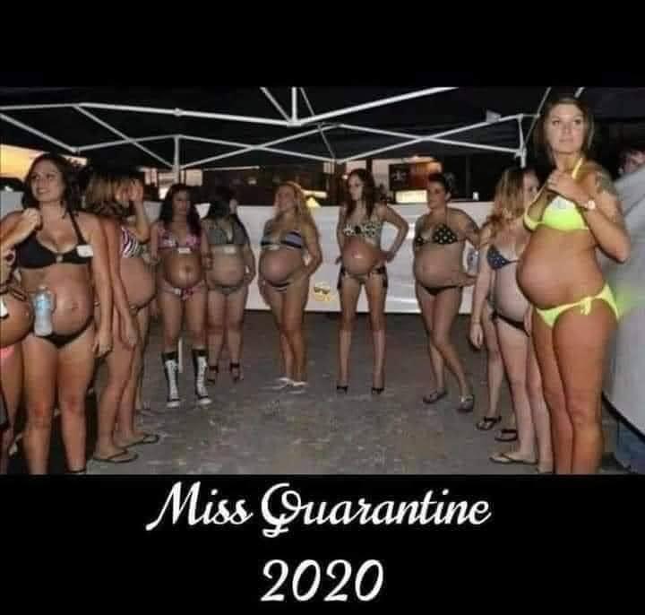 Miss Quarantine 2020.jpg