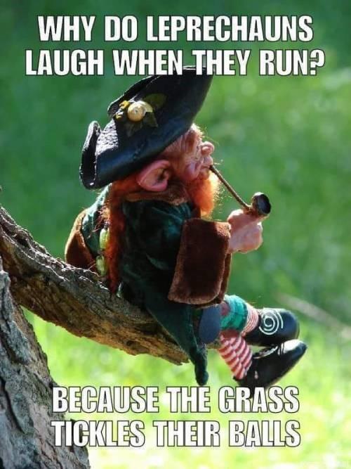 Laughing Leprachauns.jpg
