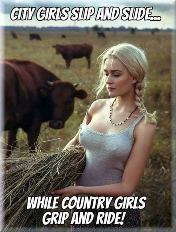 City and Country Girls.jpg