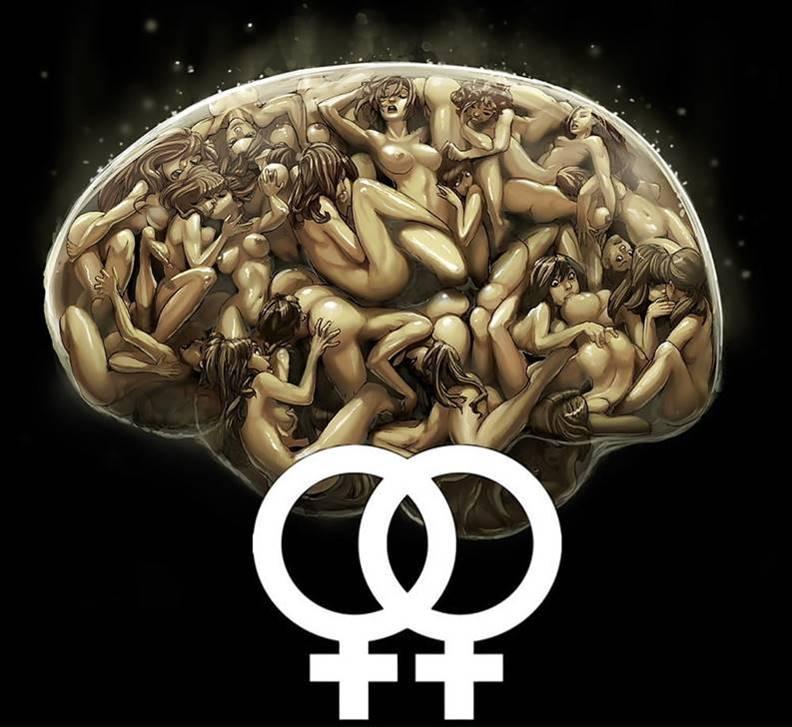 Sex on the Brain.jpg