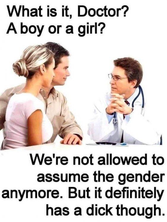 Assume Gender.jpg