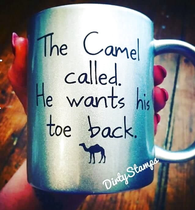 Camel Called.jpg